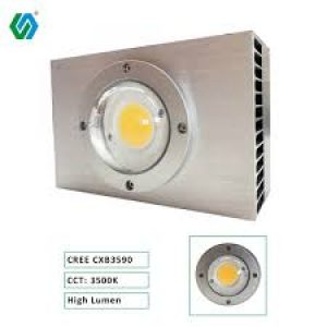 CREE COB LED LIGHT 100V